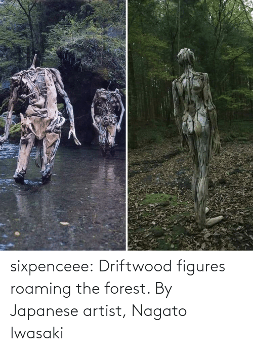 Japanese: sixpenceee:  Driftwood figures roaming the forest. By Japanese artist, Nagato Iwasaki