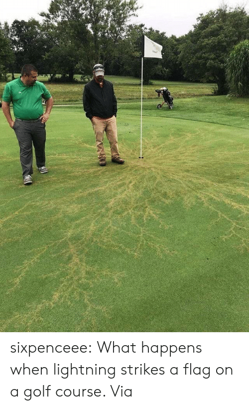 episodes: sixpenceee:  What happens when lightning strikes a flag on a golf course. Via
