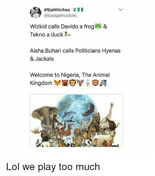 Playing Too Much:  #SjaWitches :11  @badgalmaddie  Wizkid calls Davido a frog&  Tekno a duck  Aisha Buhari calls Politicians Hyenas  & Jackals  Welcome to Nigeria, The Animal  Kingdom 봉高安'ず, e, s  Kingdom 부壱安 Lol we play too much