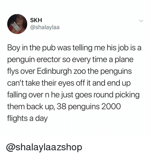 Falling Over: SKH  @shalaylaa  Boy in the pub was telling me his job is a  penguin erector so every time a plane  flys over Edinburgh zoo the penguins  can't take their eyes off it and end up  falling over n he just goes round picking  them back up, 38 penguins 2000  flights a day @shalaylaazshop
