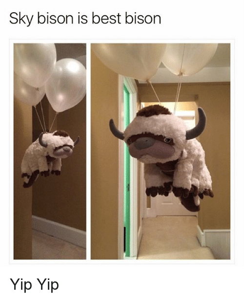 bison: Sky bison is best bison Yip Yip