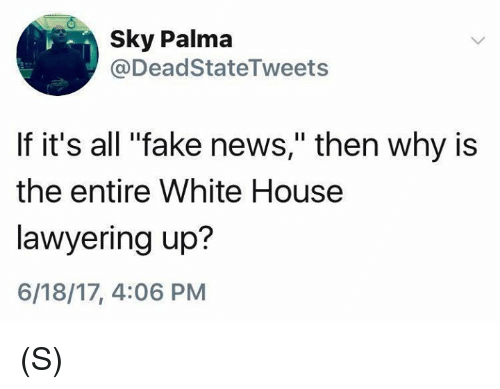 """Fake, News, and White House: Sky Palma  @Dead StateTweets  If it's all """"fake news,"""" then why is  the entire White House  lawyering up?  6/18/17, 4:06 PM (S)"""