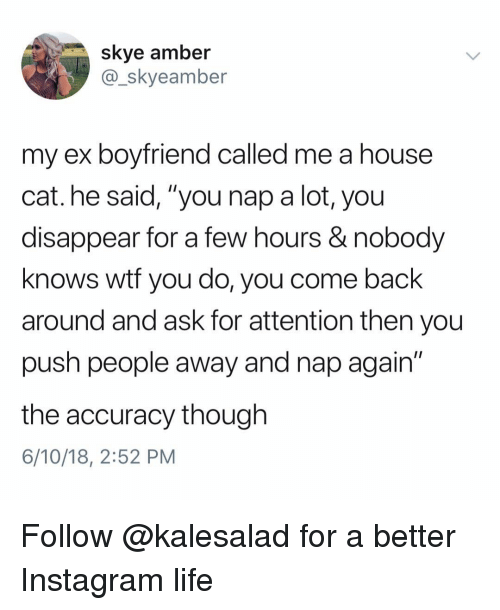 "Instagram, Life, and Memes: skye amber  @_skyeamber  my ex boyfriend called me a house  cat. he said, ""you nap a lot, you  disappear for a few hours & nobody  knows wtf you do, you come back  around and ask for attention then you  push people away and nap again""  the accuracy though  6/10/18, 2:52 PM Follow @kalesalad for a better Instagram life"