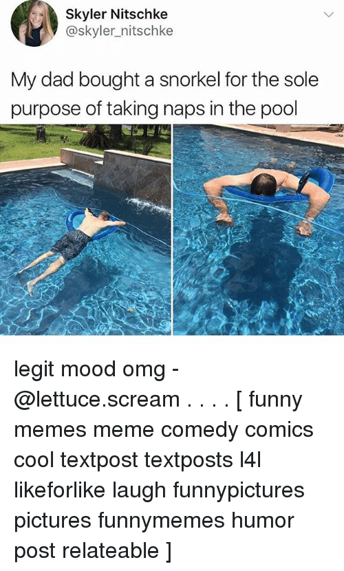 skyler: Skyler Nitschke  @skyler_nitschke  My dad bought a snorkel for the sole  purpose of taking naps in the pool legit mood omg - @lettuce.scream . . . . [ funny memes meme comedy comics cool textpost textposts l4l likeforlike laugh funnypictures pictures funnymemes humor post relateable ]