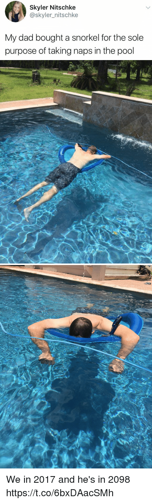 skyler: Skyler Nitschke  @skyler_nitschke  My dad bought a snorkel for the sole  purpose of taking naps in the pool We in 2017 and he's in 2098 https://t.co/6bxDAacSMh