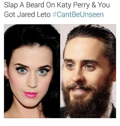 katy perry with beard 25 best memes about katy perry and dank memes katy. Black Bedroom Furniture Sets. Home Design Ideas