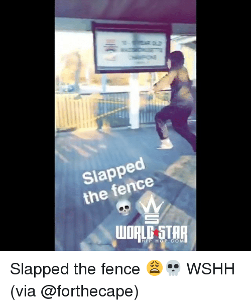 Memes, Wshh, and Hip Hop: Slapped  the fence  WORLE STHR  HIP HOP COM Slapped the fence 😩💀 WSHH (via @forthecape)