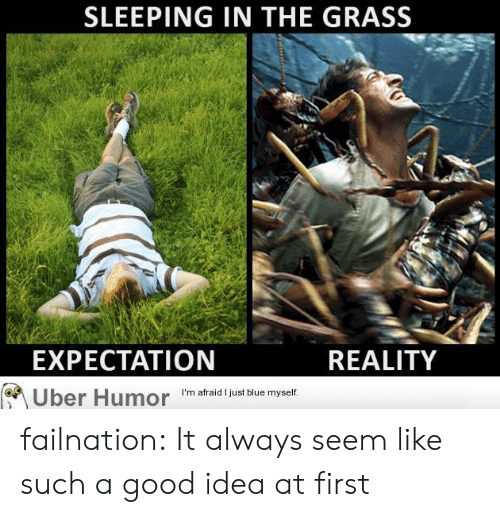 Expectation Reality: SLEEPING IN THE GRASS  EXPECTATION  REALITY  I'm afraid I just blue myself  Uber Humor failnation:  It always seem like such a good idea at first