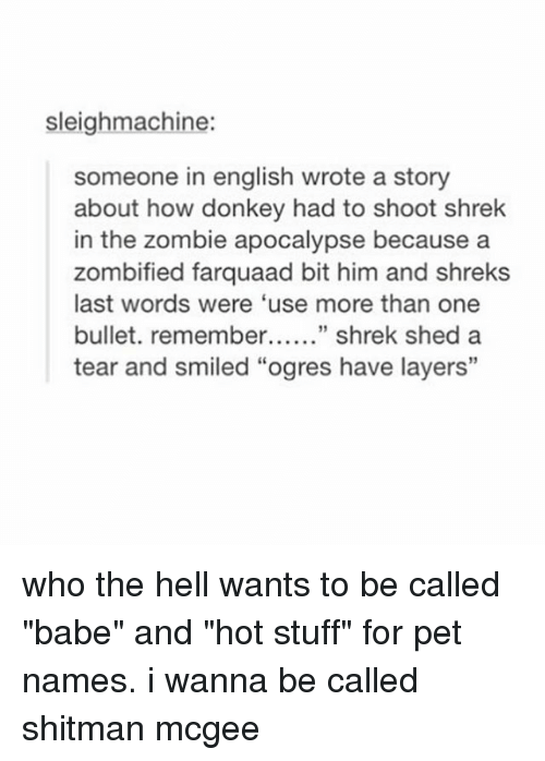 """Bulletted: sleighmachine:  someone in english wrote a story  about how donkey had to shoot shrek  in the zombie apocalypse because a  zombified farquaad bit him and shreks  last words were 'use more than one  bullet. remember shrek shed a  tear and smiled """"ogres have layers"""" who the hell wants to be called """"babe"""" and """"hot stuff"""" for pet names. i wanna be called shitman mcgee"""