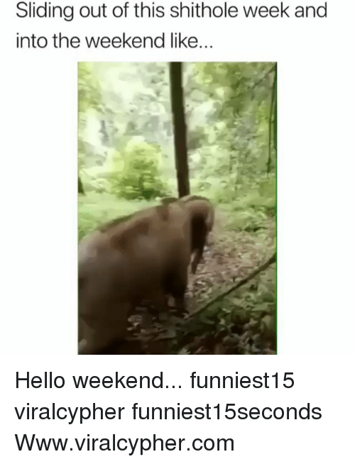 Funny, Hello, and The Weekend: Sliding out of this shithole week and  into the weekend like... Hello weekend... funniest15 viralcypher funniest15seconds Www.viralcypher.com