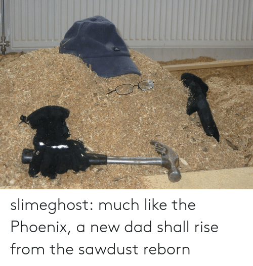 new dad: slimeghost: much like the Phoenix, a new dad shall rise from the sawdust reborn