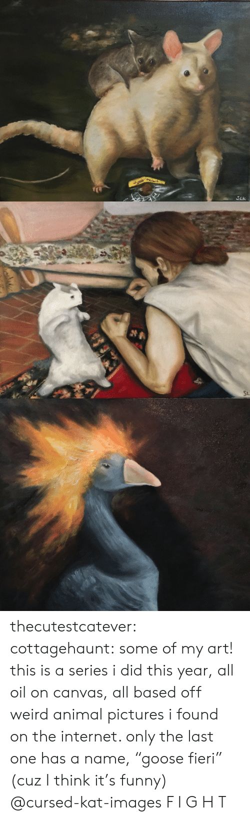 """kat: SLk   St thecutestcatever:  cottagehaunt:  some of my art! this is a series i did this year, all oil on canvas, all based off weird animal pictures i found on the internet. only the last one has a name,""""goose fieri"""" (cuz I think it's funny)  @cursed-kat-images   F I G H T"""