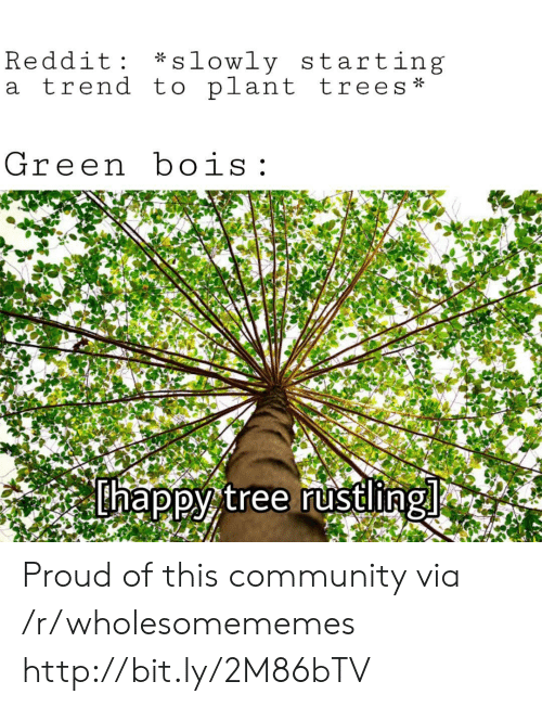 Rustling: *slowly starting  Reddit  a trend to plant trees  Green bois  thappy tree rustling Proud of this community via /r/wholesomememes http://bit.ly/2M86bTV