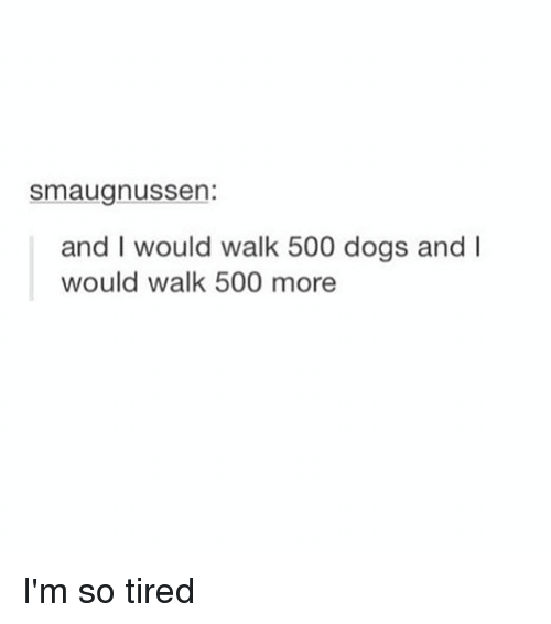 Girl Memes: Smaugnussen:  and I would walk 500 dogs and I  would walk 500 more I'm so tired