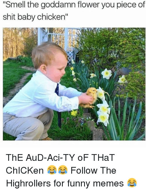 "Funny, Memes, and Shit: Smell the goddamn flower you piece of  shit baby chicken"" ThE AuD-Aci-TY oF THaT ChICKen 😂😂  Follow The Highrollers for funny memes 😂"