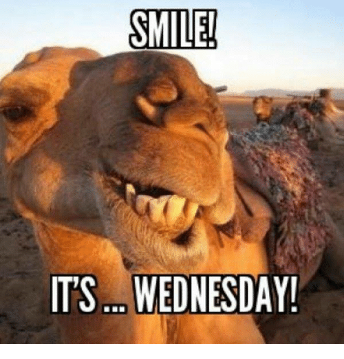 25+ Best Memes About Its Wednesday | Its Wednesday Memes