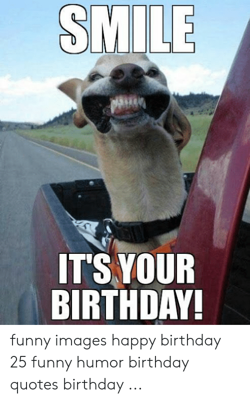 🔥 25 Best Memes About Humor Birthday