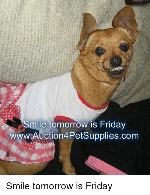 Friday, Memes, and Smile: Smile tomorrow is Friday  wwW.Auction4Petsupplies.com Smile tomorrow is Friday