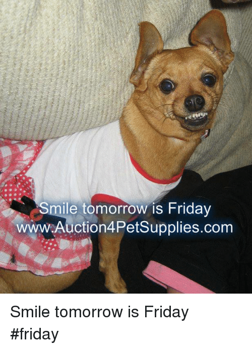 Memes, 🤖, and Tomorrow Is Friday: Smile tomorrow is Friday  www.Auction4PetSupplies.com Smile tomorrow is Friday              #friday