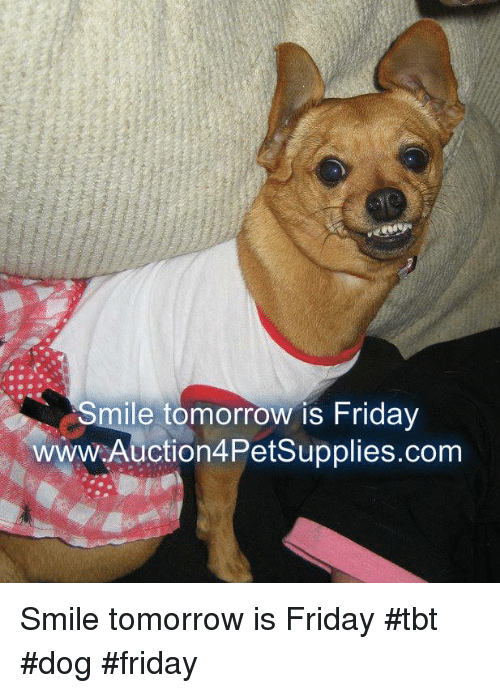 Friday, Memes, and Tbt: Smile tomorrow is Friday  wwW.Auction4Petsupplies.com Smile tomorrow is Friday                #tbt   #dog #friday