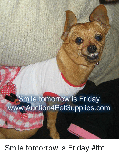 Friday, Memes, and Tbt: Smile tomorrow is Friday  wwW.Auction4Petsupplies.com Smile tomorrow is Friday           #tbt