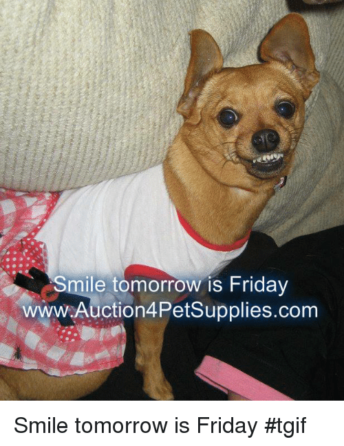 Friday, Memes, and Tgif: Smile tomorrow is Friday  wwW.Auction4Petsupplies.com Smile tomorrow is Friday                #tgif