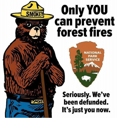 service: SMOK  Only YOU  can prevent  forest fires  NATIONAL  PARK  SERVICE  Seriously. We've  been defunded  It's just you now.