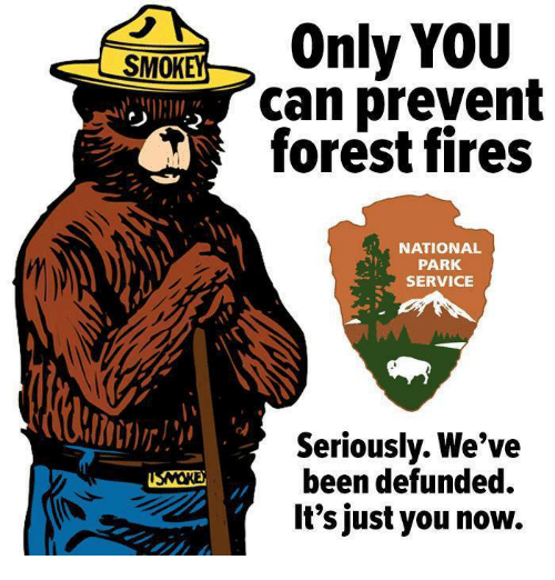 service: SMOK  Only YOU  can prevent  forest fires  NATIONAL  PARK  SERVICE  Seriously. We've  been defunded.  It's just you now.