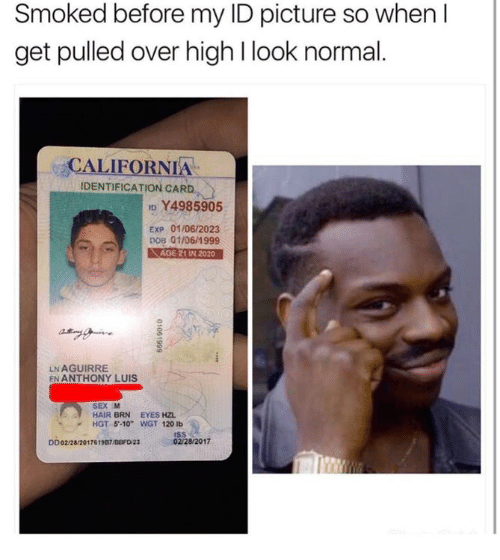 """dobs: Smoked before my ID picture so when  get pulled over high l look normal  CALIFORNIA  IDENTIFICATION CARD  ID Y4985905  Exp 01/06/2023  DOB 01/06/1999  AGE 21IN 2020  LNAGUIRRE  EN ANTHONY LUIS  HAIR BRN  EYES HZL  HGT 5' 10"""" WGT 120 lb  02/28/2017  DD02/28/201761987/BBFDN23"""