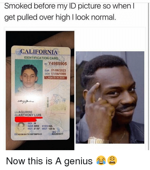 """dobs: Smoked before my ID picture so when  get pulled over high l look normal  CALIFORNIA  IDENTIFICATION CARD  ID Y4985905  Exp 01/06/2023  DOB 01/06/1999  D AGE 21N2020  LN AGUIRRE  EN ANTHONY LUIS  SEX M  HAIR BRN EYES HZL  HGT 5 10"""" WGT 120 lb  02/28/2017  DD02/28/2017619B7IBBFDW23 Now this is A genius 😂😩"""