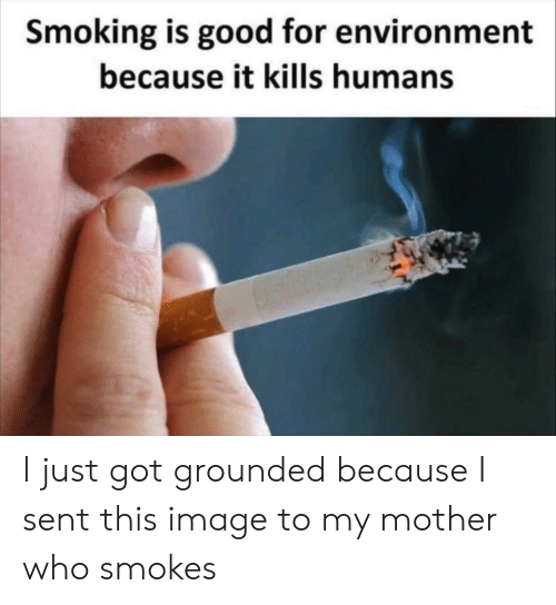grounded: Smoking is good for environment  because it kills humans I just got grounded because I sent this image to my mother who smokes