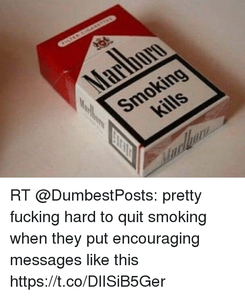 Smoking, They, and Quit Smoking: Smoking RT @DumbestPosts: pretty fucking hard to quit smoking when they put encouraging messages like this https://t.co/DlISiB5Ger