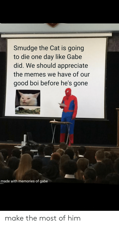 Gabe: Smudge the Cat is going  to die one day like Gabe  did. We should appreciate  the memes we have of our  good boi before he's gone  made with memories of gabe make the most of him