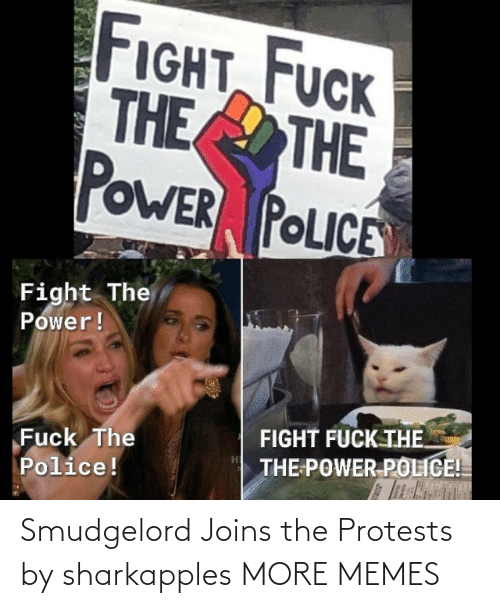 Dank, Memes, and Target: Smudgelord Joins the Protests by sharkapples MORE MEMES