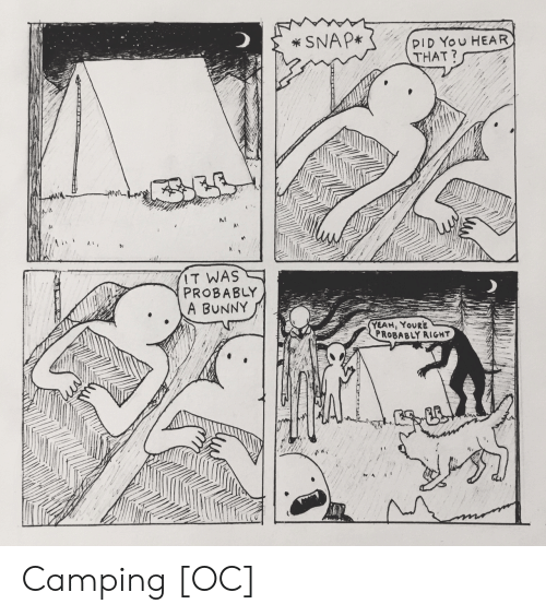 camping: SNAP*  PID You HEAR  THAT?  IT WAS  PROBABLY  A BUNNY  YEAH, YOURE  PROBABLY RIGHT  ACCILLTT Camping [OC]