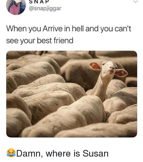 Best Friend, Memes, and Best: SNAP  @snapjiggar  When you Arrive in hell and you can't  see your best friend 😂Damn, where is Susan