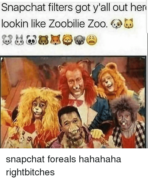 Memes, Snapchat, and 🤖: Snapchat filters got y'all out her  lookin like Zoobilie Zoo. snapchat foreals hahahaha rightbitches