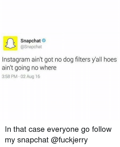 Dogs, Funny, and Hoe: Snapchat  @Snapchat  nstagram ain't got no dog filters y'all hoes  ain't going no where  3:58 PM 02 Aug 16 In that case everyone go follow my snapchat @fuckjerry