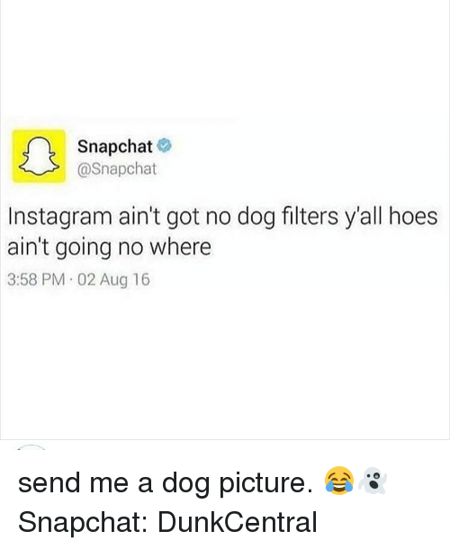 Dogs, Funny, and Hoe: Snapchat  @Snapchat  nstagram ain't got no dog filters yall hoes  ain't going no where  3:58 PM 02 Aug 16 send me a dog picture. 😂👻 Snapchat: DunkCentral
