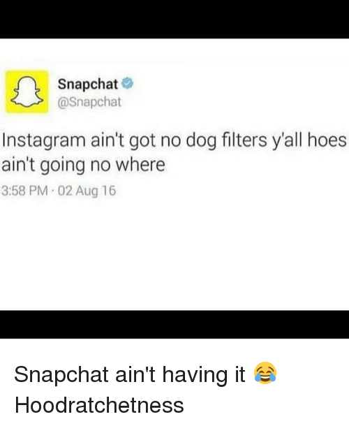 Dogs, Hoe, and Snapchat: Snapchat  @Snapchat  nstagram ain't got no dog filters y'all hoes  ain't going no where  3:58 PM 02 Aug 16 Snapchat ain't having it 😂 Hoodratchetness