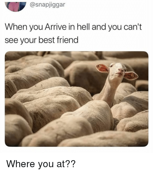 Best Friend, Memes, and Best: @snapjiggar  When you Arrive in hell and you can't  see your best friend Where you at??