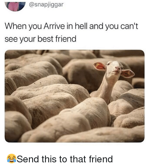 Best Friend, Memes, and Best: @snapjiggar  When you Arrive in hell and you can't  see your best friend 😂Send this to that friend