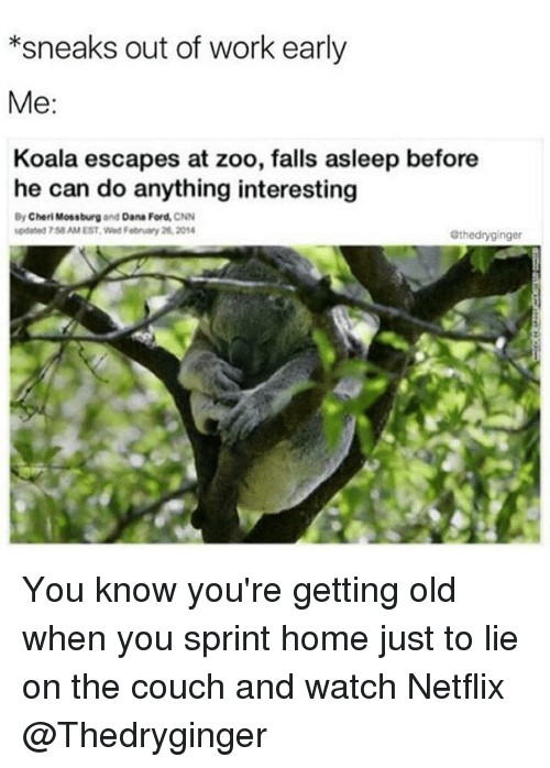 Cherie: *sneaks out of work early  Me:  Koala escapes at zoo, falls asleep before  he can do anything interesting  By Cheri Mossburg  and Dana Ford,  CNN  updated 7saAM EST Wed February 2014  Othedryginger You know you're getting old when you sprint home just to lie on the couch and watch Netflix @Thedryginger