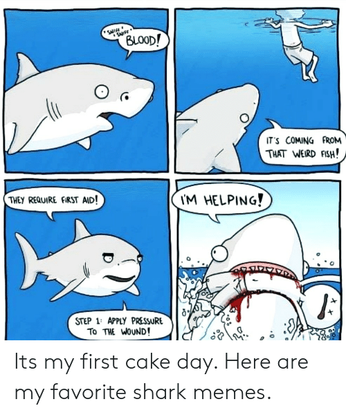 weird fish: SNIEE  SurFF  (BLOOD!  IT'S COMING FROM  THAT WEIRD FISH!  THEY REQUIRE FIRST AID!  I'M HELPING!  STEP 1: APPLY PRESSURE  To THE WOUND! Its my first cake day. Here are my favorite shark memes.