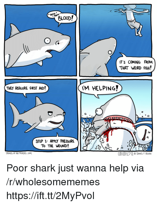 weird fish: SNIFF  BLO0D/  IT'S COMING FROM  THAT WEIRD FISH!  THEY REQUIRE fIRST AID!  'M HELPING?  0  STEP 1: APPLY PRESSURE  To THE WoUND!  JAMES oF NO TRADES.COM  GO。ジt @JAMES F REGAN Poor shark just wanna help via /r/wholesomememes https://ift.tt/2MyPvol