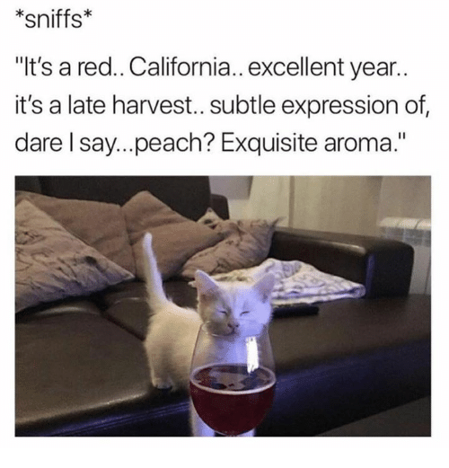 "California, Red, and Peach: *sniffs  ""It's a red.. California.. excellent year..  it's a late harvest..subtle expression of  dare l say...peach? Exquisite aroma."""