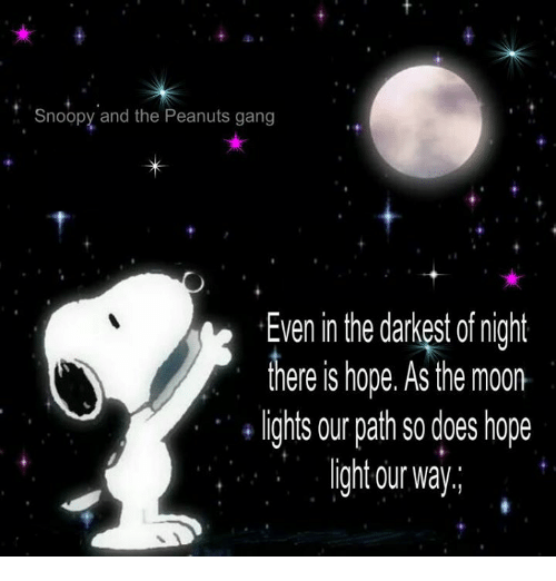 gangs: Snoopy and the Peanuts gang  Even in the darkest of night  there is hope. As the moon.  lights our path so does hope  ght our way.