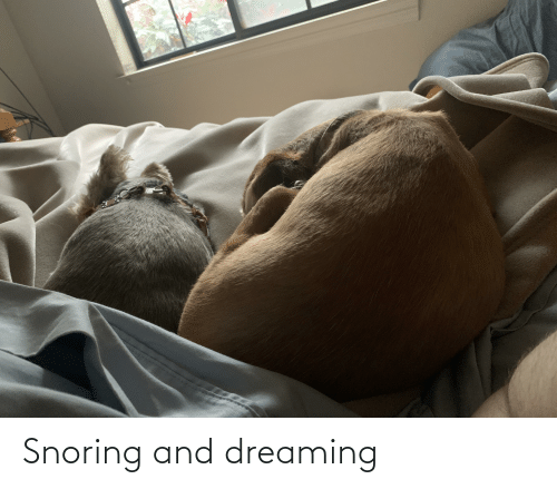 dreaming: Snoring and dreaming