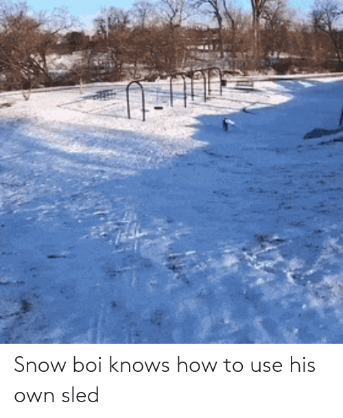 Snow: Snow boi knows how to use his own sled