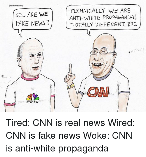 cnn.com, Fake, and Memes: SO.. ARE WE  FAKE NEWS?  TECHNICALLY WE ARE  ANTI-WHITE PROPAGANDA!  ( 0TALLY DIFFERENT, BRO.  CN  mSn Tired: CNN is real news Wired: CNN is fake news Woke: CNN is anti-white propaganda